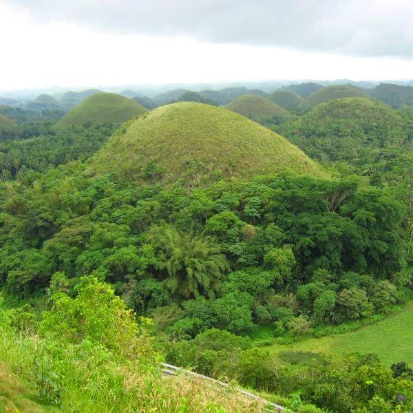 Tours Of Bohol 600